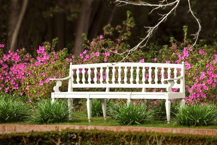 Stellenberg Gardens, banco
