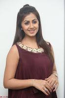 Nikki Galrani in a Brown Shining Sleeveless Gown at Nakshatram music launch ~  Exclusive 065.JPG