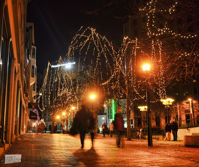 Portland, Maine USA photo by Corey Templeton of holiday lights in Monument Square Way at night. December 2011.