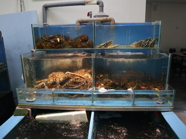 IMG 1574 - 二訪東港活海產│現點現撈,每樣餐點都超級新鮮,必點龍蝦味噌鍋
