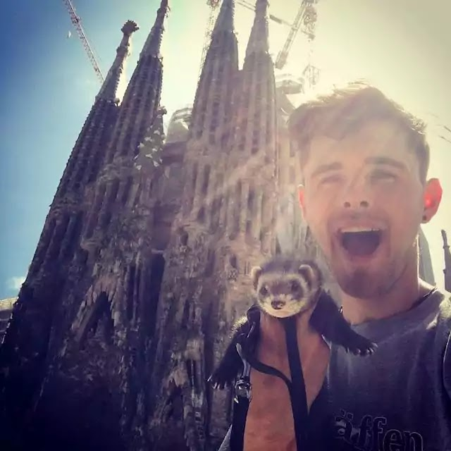 Guy Quits His Job To Travel The World With A Ferret