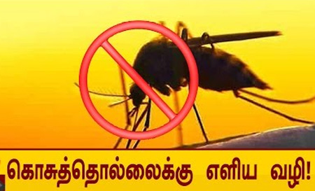 Easy and healthy ways to keep mosquitoes away