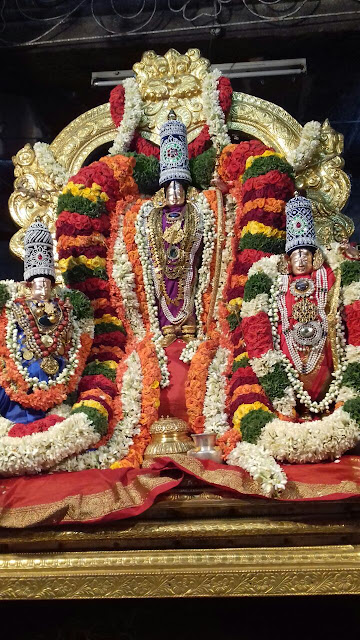 Sri Srinivasa Kalyanothsavam at Palace Grounds for societal welfare