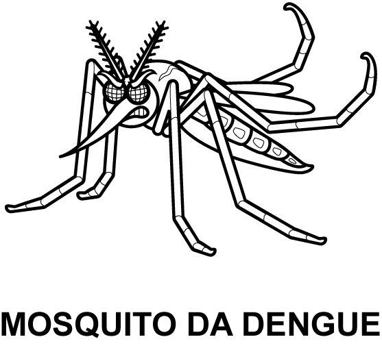 mosquito del dengue animado para colorear