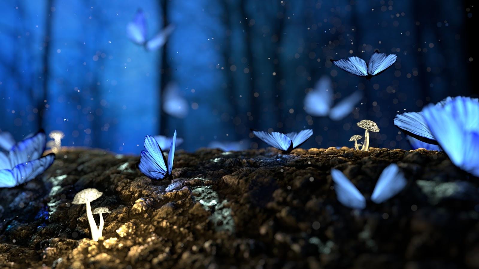 薄暗い森の中の白い小さな茸と共に青い蝶が何匹も集まっている