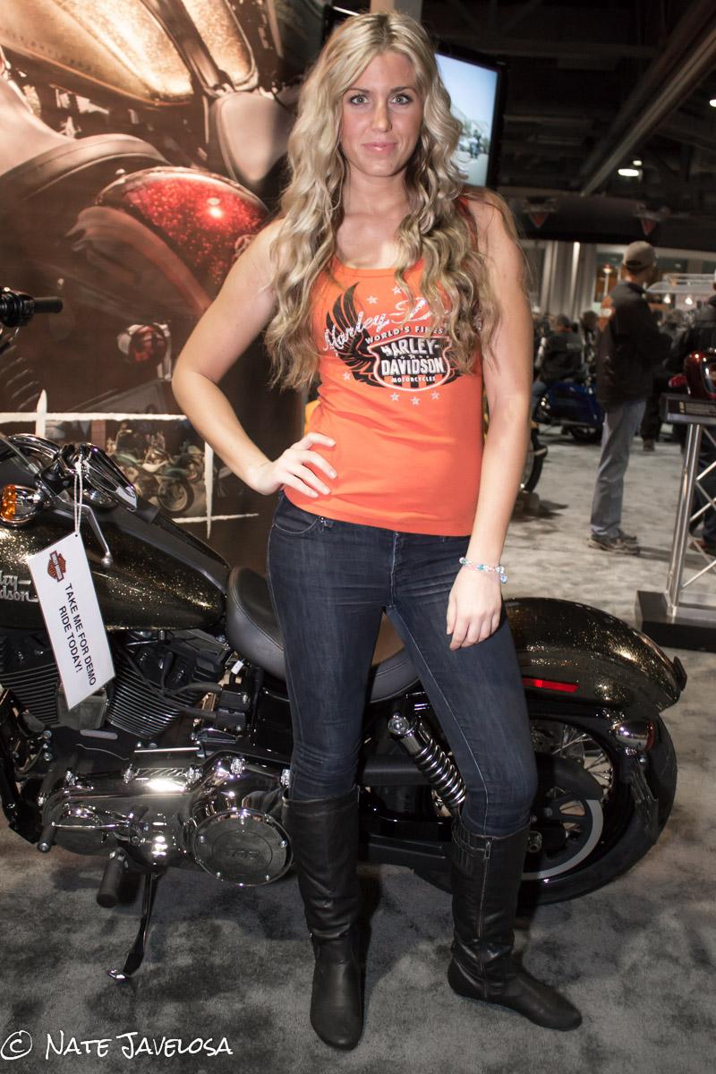 Harley Davidson Los Angeles >> Nate Javelosa: Progressive International Motorcycle Show of Long Beach 2012: The Talent Rundown ...