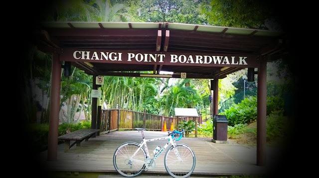 Changi Point Boardwalk, Singapore