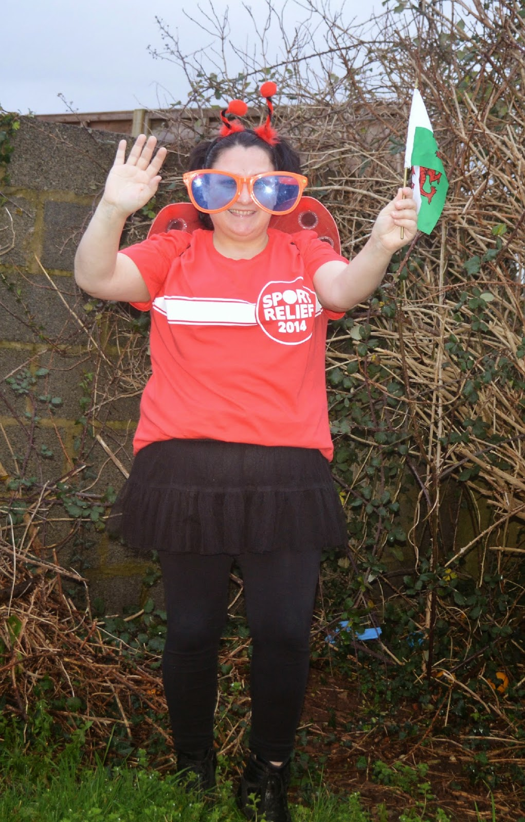 , Please Support Wales Team Honk (2014 Sports Relief Blogger's Land's End to John O'Groats Relay)