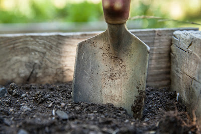 Tips for Getting the Garden Ready for Summer