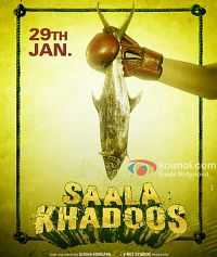 Download Saala Khadoos (2016) 1GB DVDRip Hindi Movie