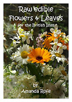 The front cover of Raw Edible Flowers and Leaves by Amanda Rofe