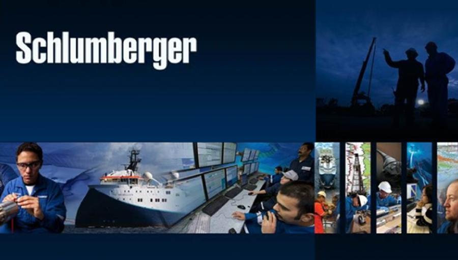 Schlumberger Softwares, IOGeophysicist, Petrel 2013.2, Petrel DemoData, Petrel Tutorials