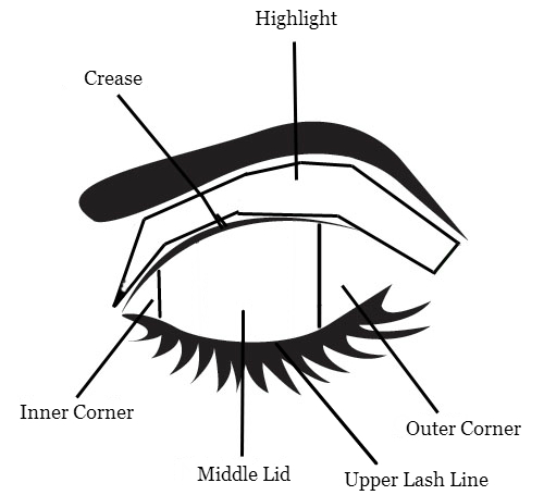 eye shadow diagram i found this diagram on