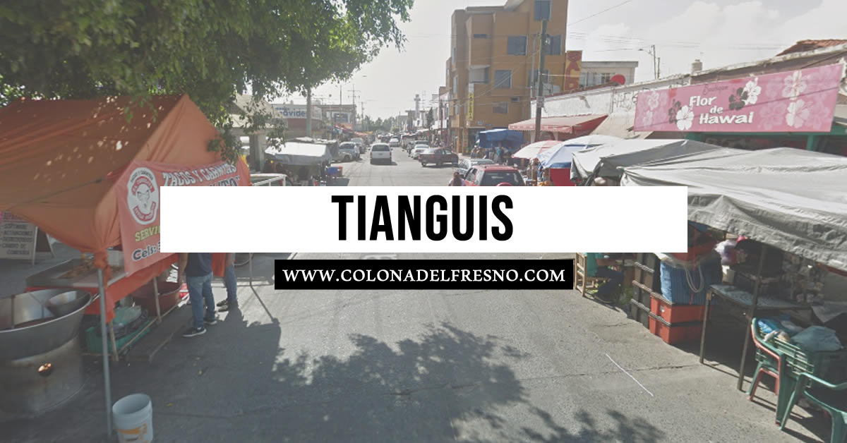 colonia del fresno, tianguis, guadalajara