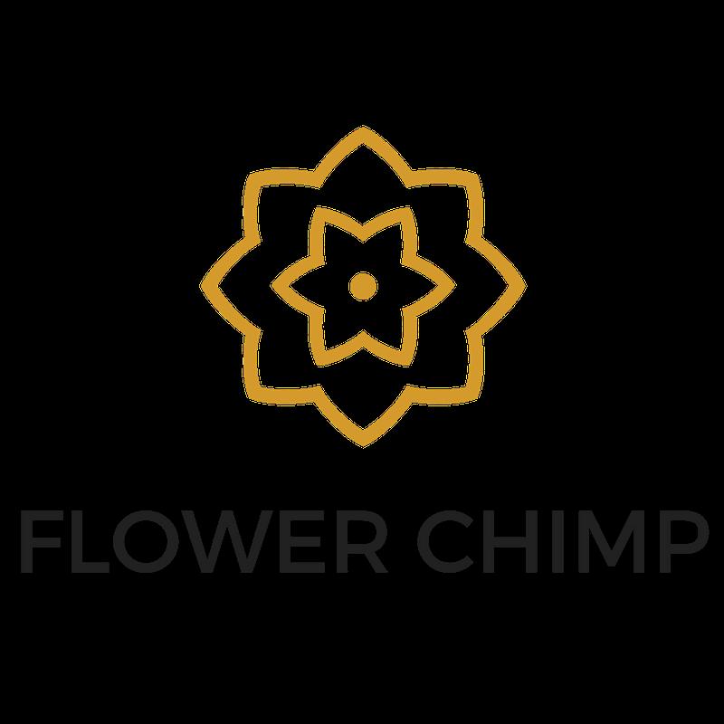 Flower Chimp Menerima Pelaburan Berjumlah RM 6 Juta Berikutan Prestasi Cemerlang di Asia Tenggara