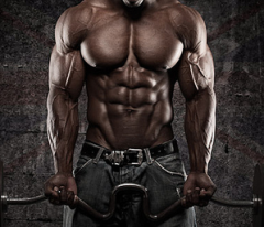 SARM-ing Up Your Gains - Steroid-Like Lean Mass Gains W/Out