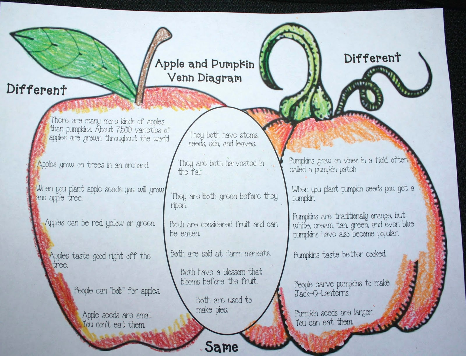 Venn Diagram Bulletin Board Square D Hand Off Auto Switch Wiring Comparing Apples And Pumpkins Classroom Freebies
