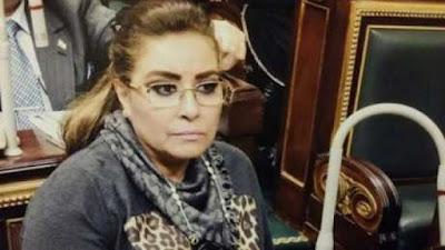 غادة عجمي, مجلس النواب, حظر النقاب, المصالح الحكومية, الأماكن العامة,