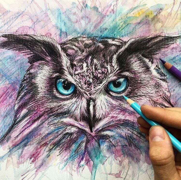 04-Owl-Liam-James-Cross-Wild-Animals-Drawings-and-Paintings-www-designstack-co