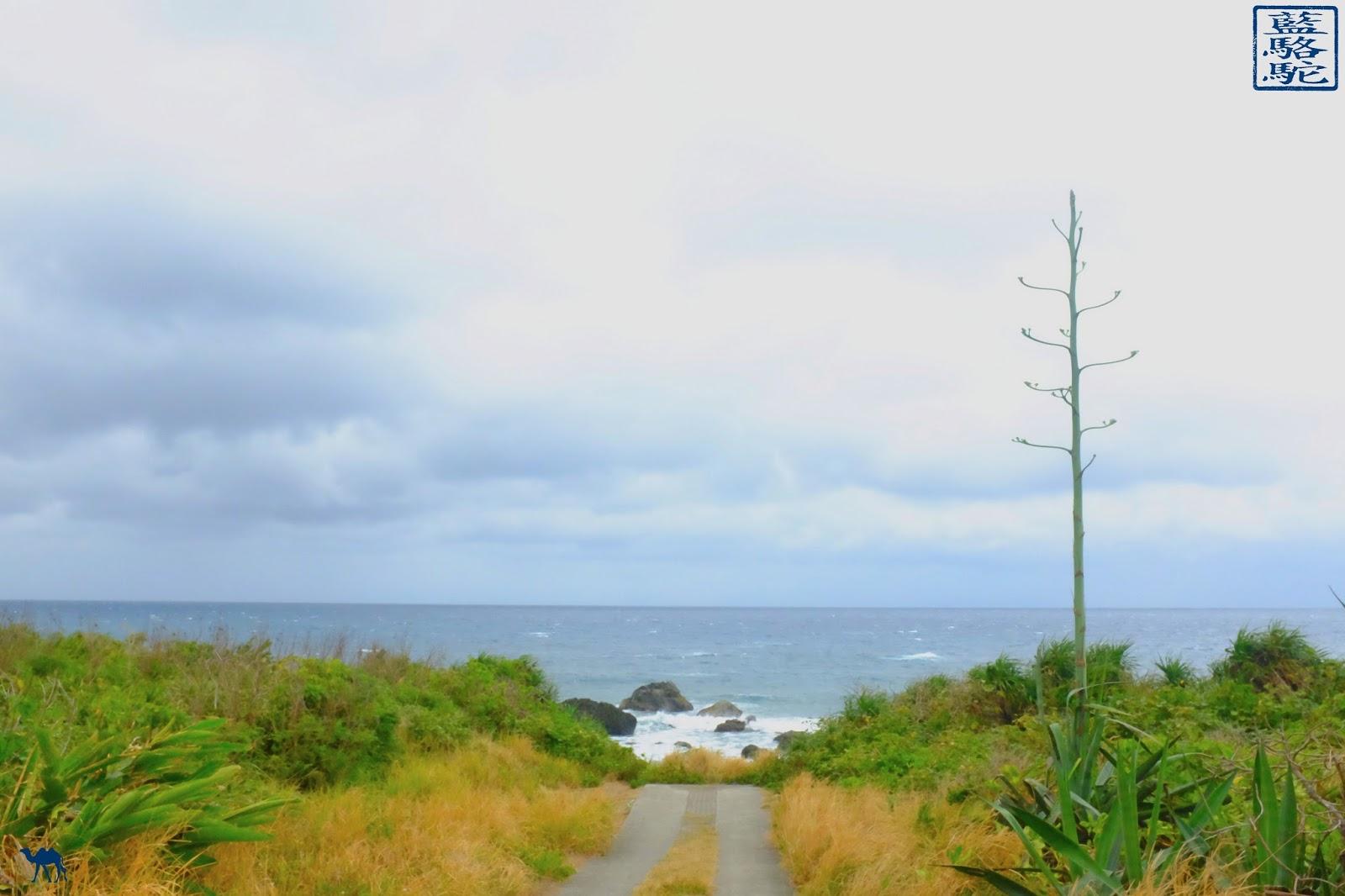 Le Chameau Bleu - Blog Voyage Taiwan - Voyage sur la cote est de Taiwan- cote taïwanaise