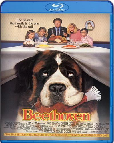 Beethoven [1992] [BD25] [Subtitulado]