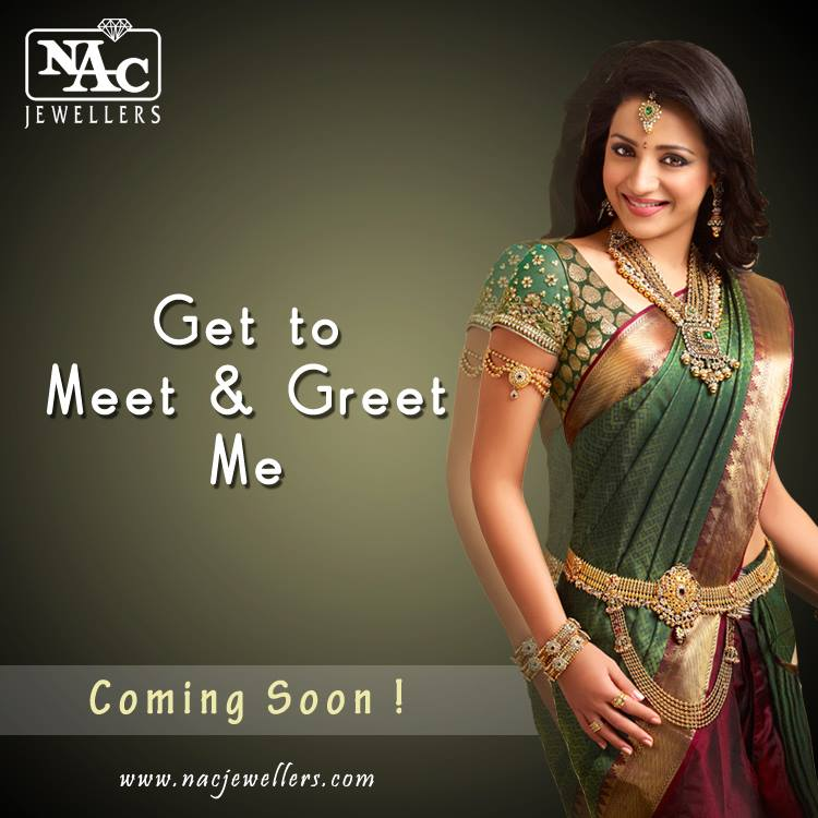 Indian Jewellery And Clothing South Actress Trisha