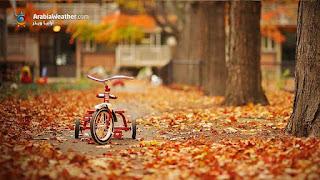 صور فصل الخريف