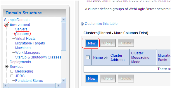 Middleware Administration: Unicast Clustering