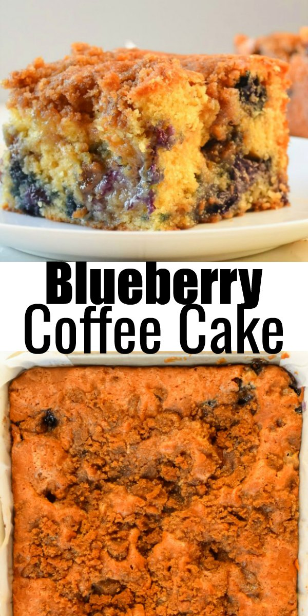 Blueberry Coffee Cake recipe with a brown sugar cinnamon swirl and brown sugar crumb from Serena Bakes Simply From Scratch.
