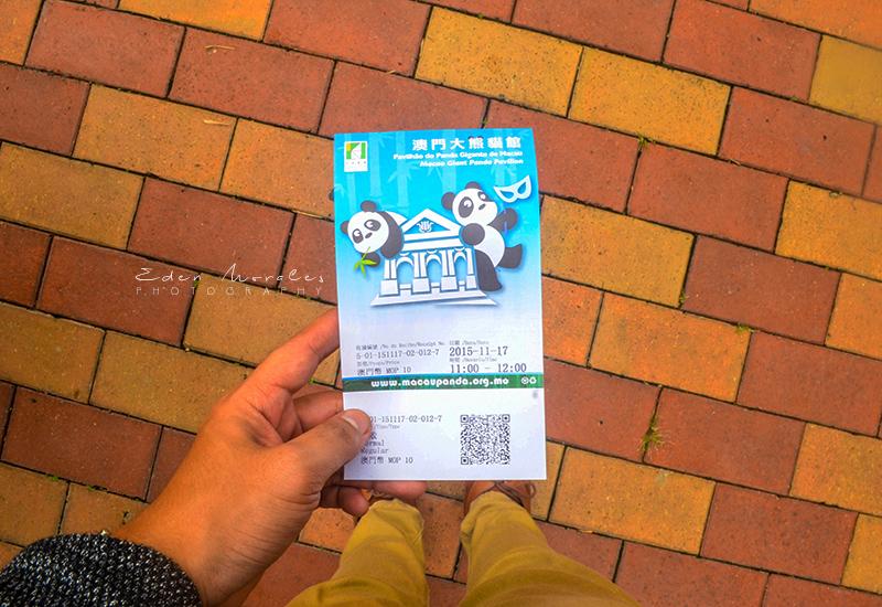Uncovering-Eden-Macau-Giant-Panda-Pavilion