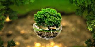 Dampak Aktivitas Manusia bagi Lingkungan, Polusi Air, Polusi Udara, Perubahan Iklim dan Solusi Dari Masalah Lingkungan Yang di timbulkan oleh aktivitas manusia.