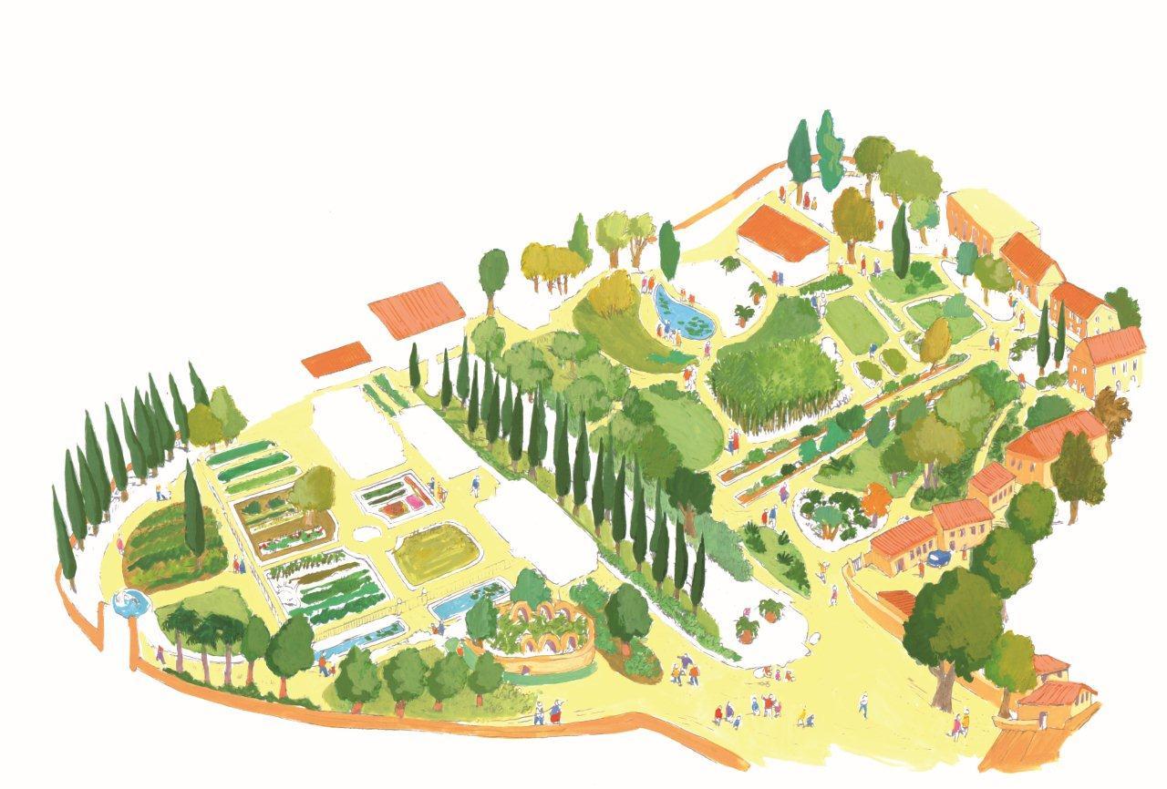 Le petit guide de montpellier le jardin des plantes - Jardin des plantes de montpellier ...