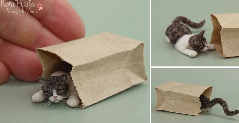 19-Peekaboo-Cat-Kerri-Pajutee-Miniature-Sculpture-that-look-Real-www-designstack-co
