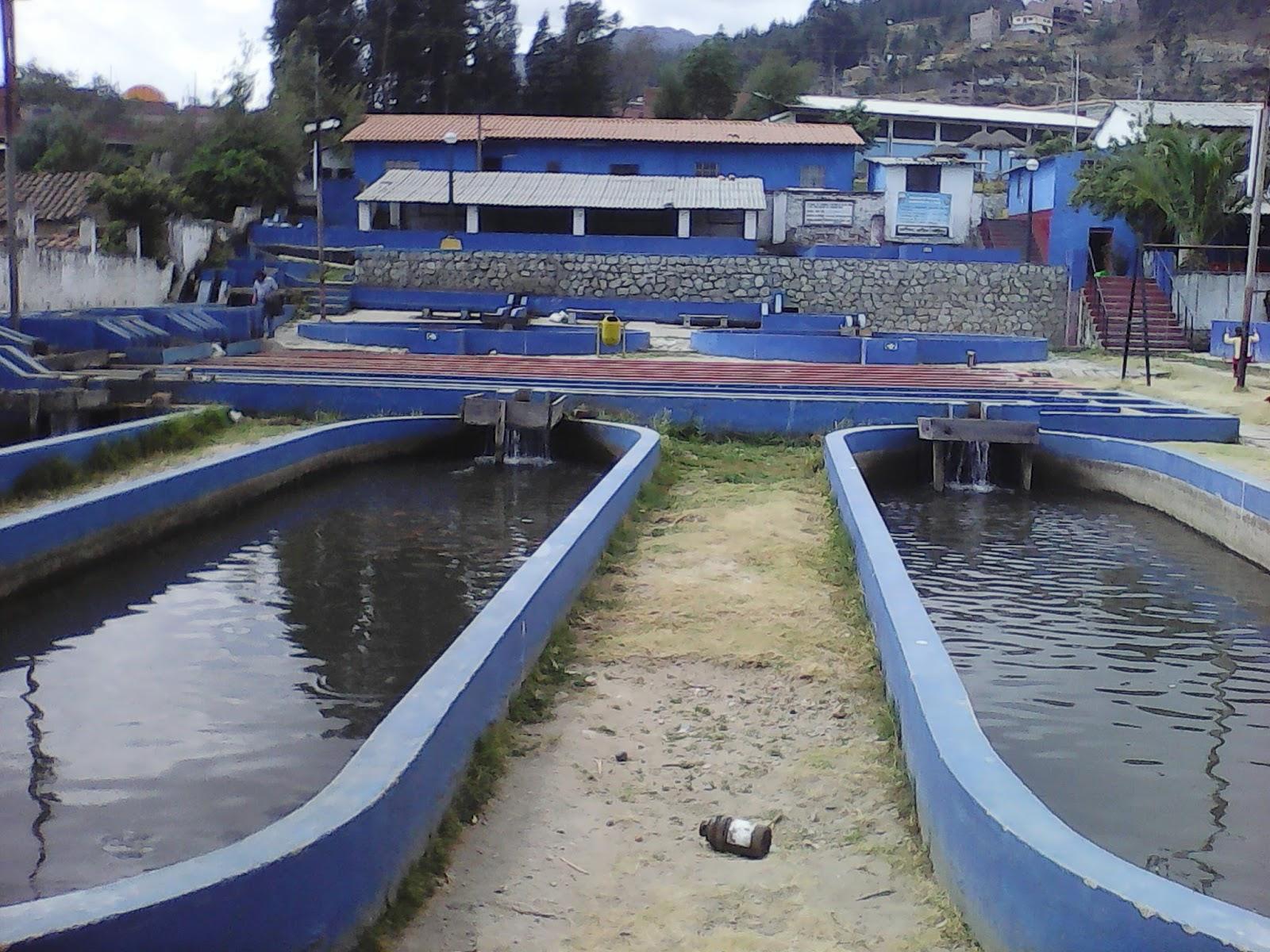 Despertar cajatambino propuesta para la construcci n de for Construccion de estanques acuicolas
