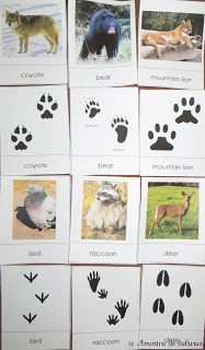 For The Love Of Preschool 21 New Ways To Play With Animal