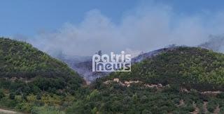 Ηλεία: Μεγάλη πυρκαγιά στα Διάσελλα – Καίγεται δασική έκταση