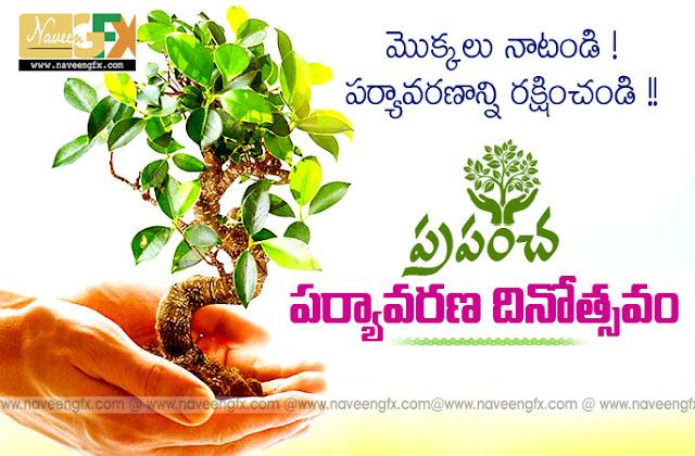 Tree plantation day essay