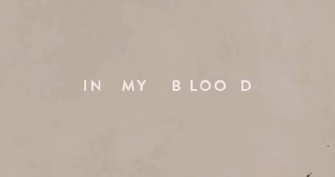 Shawn-Mendes-In-My-Blood.mp3 Download Now