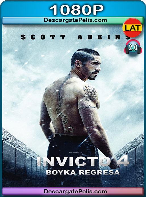 Boyka: Invicto 4 (2016) 1080p Latino