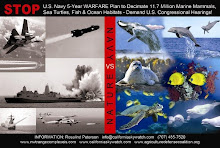 U.S. NAVY WARFARE ON MARINE MAMMALS