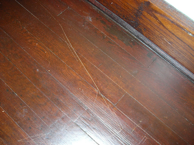 Repair Cat Scratched Wallpaper
