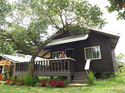 Mango Tours Tagaytay Paradizoo log house
