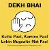 WHATSAPP STATUS - DEKH BHAI KUTTE PAAL KAMINE PAAL