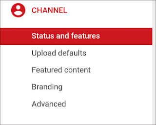 Youtube channel advance settings