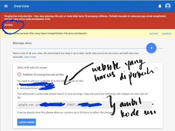 Akun Google Adsense Minta ads txt
