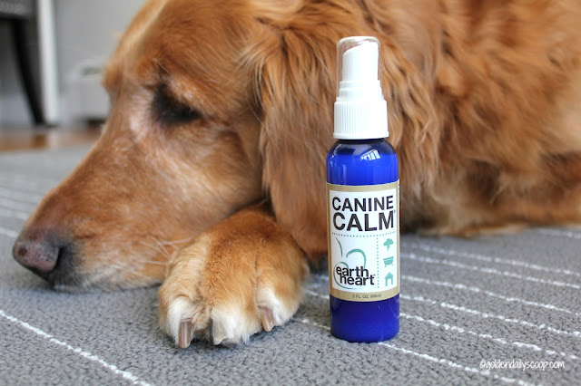 the nurturing paw canine calm spray for dogs with anxiety