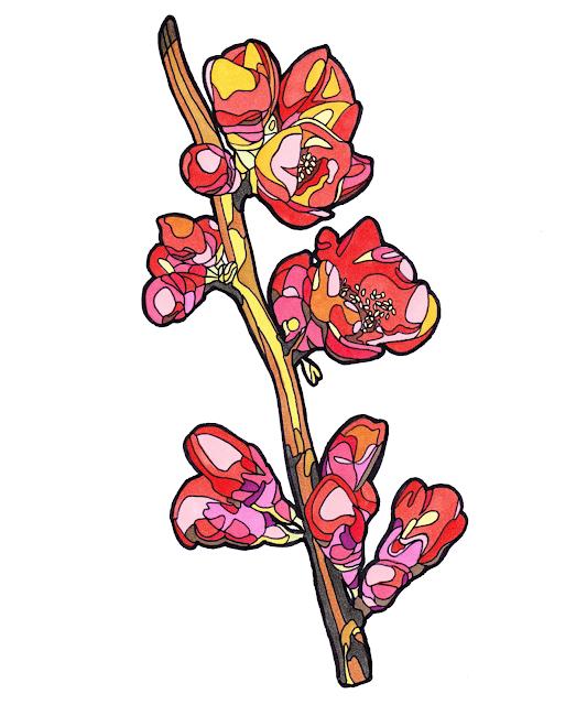 little-flowers