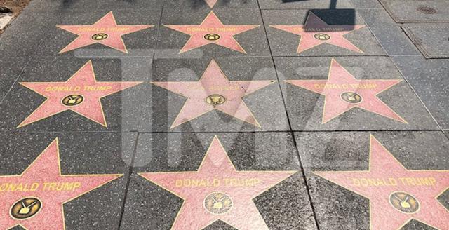 No Fake News Here JUST FAKE DONALD TRUMP WALK OF STARS ON HOLLYWOOD BLVD