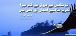 Poetry about shaheen by Allama Iqbal