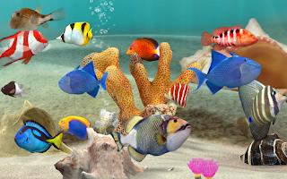 Fish Farm 3 Mod
